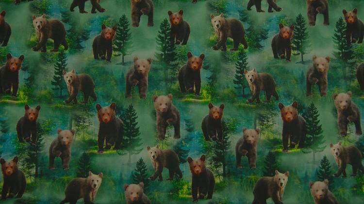 Bomull jersey bjørner