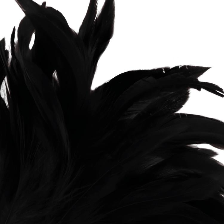 Darkness, Svart fjädervippa