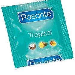 Pasante Taste, blandade, tropiska smaker - ananas, mango eller kokos