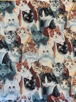 Möbeltyg Katt