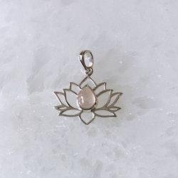 Hänge, Lotusblomma rosenkvarts (sterlingsilver 925)