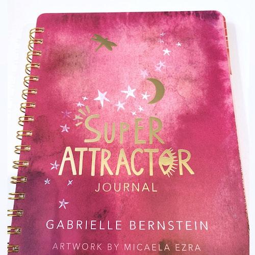 Super Attractor, journal