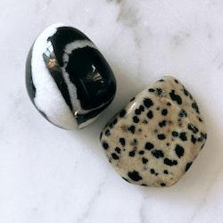 Dalmatiner Jaspis, trumlad