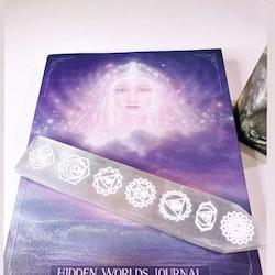 Hidden Worlds Journal