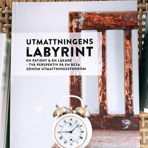 """Utmattningens labyrint: En patient & en läkare - två perspektiv på en resa genom utmattningssyndrom"""""""