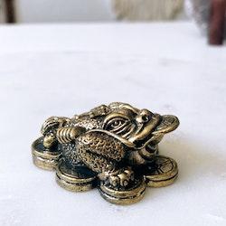 Trebent lyckogroda, brons