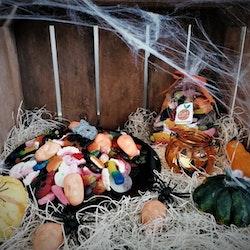 Halloweenpaketet (endast tillsammans med fruktleverans)