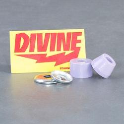 Divine Standard 78A