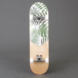 "Retro S Malibu Palm Skateboard 8.0"" Komplett"