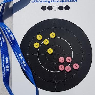 Skidskytteexpertens anvisningstavla med magneter