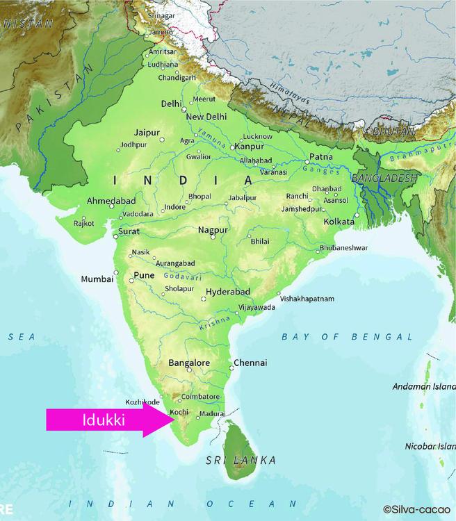 Indien - Idukki (1KG)