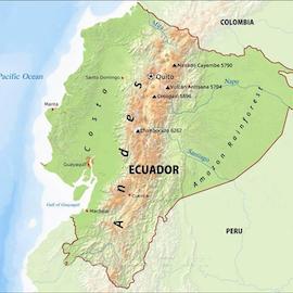 Ecuador - Wild Harvest Direct Trade