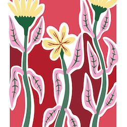 """The meadow III"" | Pink"