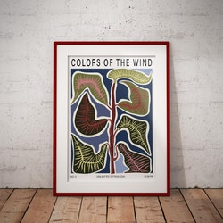 """""""Colors of the wind"""""""