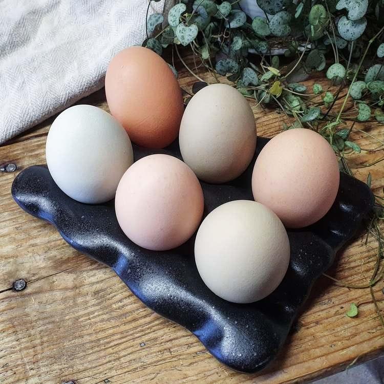 Äggfat 6 ägg, svart
