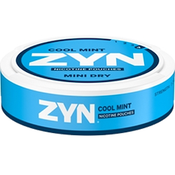 Zyn Mint Dry cool mint no4
