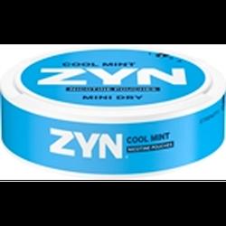 Zyn Mint Dry cool mint no2