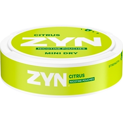 Zyn Mint Dry Citrus no2