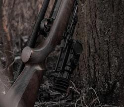 Night Pearl Fox 19 Hunt