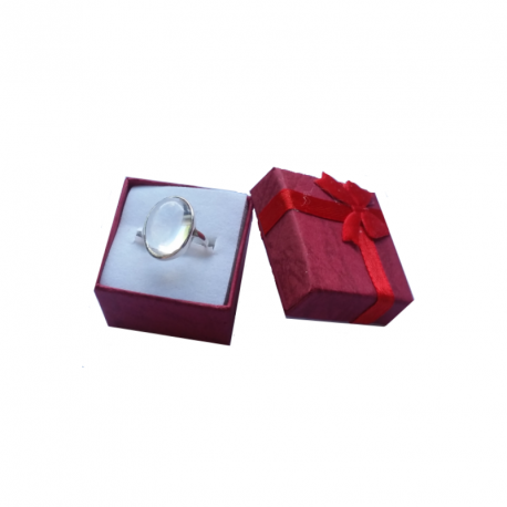 Ringar - Amuletten