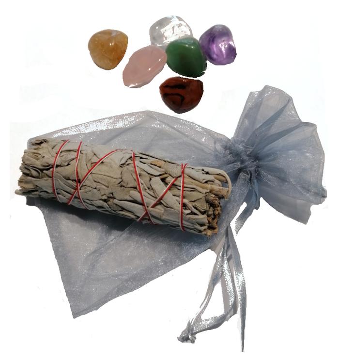 Startkit med stenar och salvia