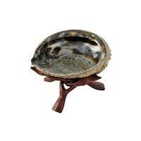 Abalonesnäcka med ställning i trä