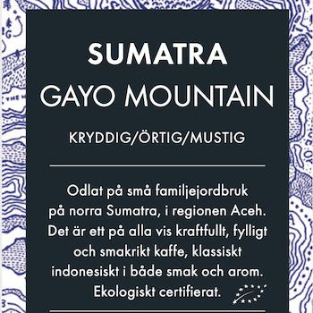Sumatra - Gayo Mountain