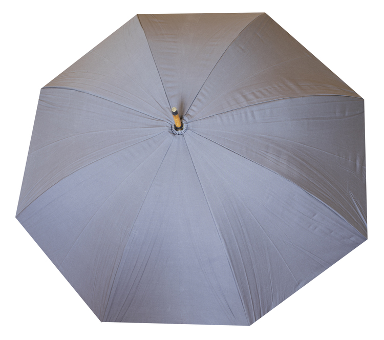 Rönnsbol's paraply