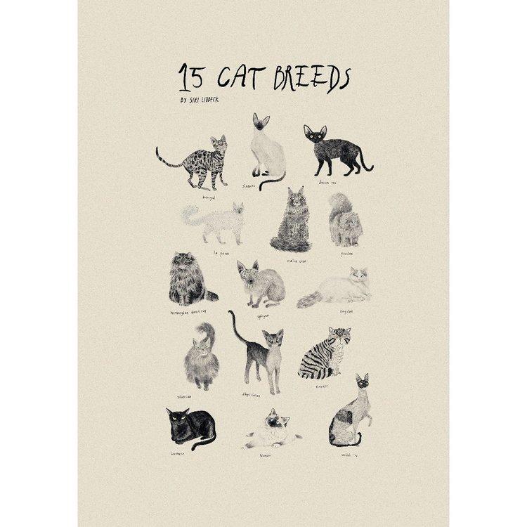 15 cat breeds