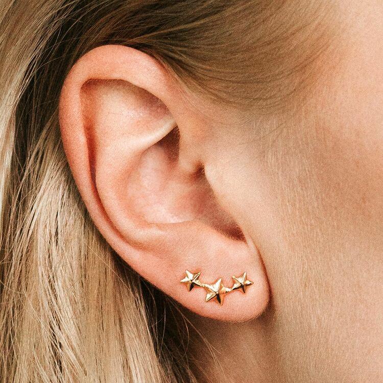 Stardust earrings
