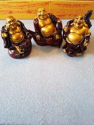 Buddhasett