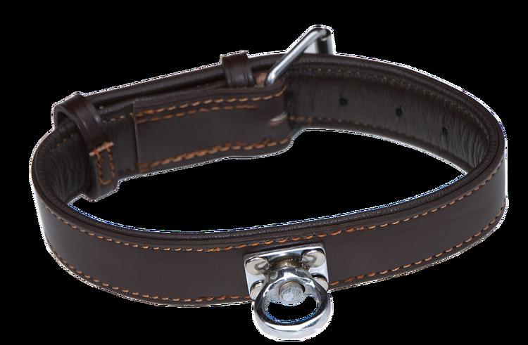"Leder-Halsband für Jagdhunde ""Champion"""