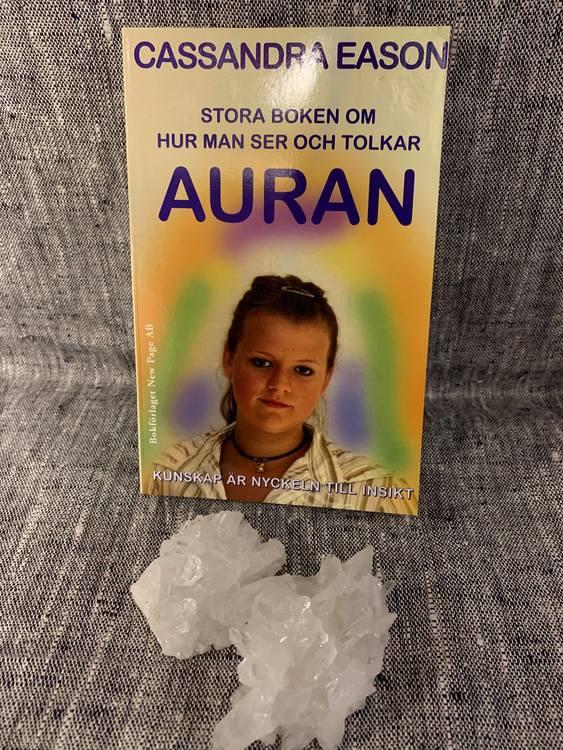 Stora boken om hur man ser och tolkar auran : kunskap är nyckeln till insikt