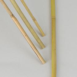 Växtpinne Bambu flerpack