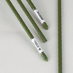 Grön pinne plastad stål