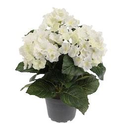 Hortensia Siden 30 cm