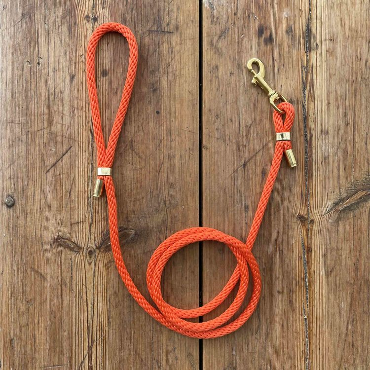 Hundkoppel - Orange - 150cm