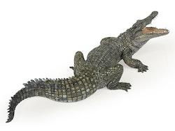 Krokodil (Papo)