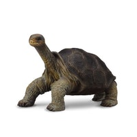 Galapagossköldpadda (Collecta)