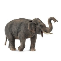 Asiatisk elefant  (Collecta)