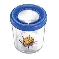 Insektsburk, stor