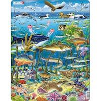 Havsdjur 1, 60 bitar