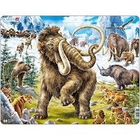 Mammut 64 bitar