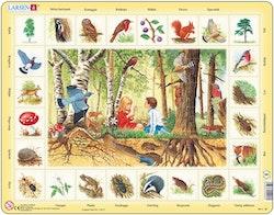 Natur Skogen, 48 bitar