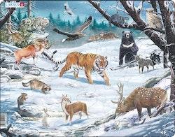 Sibiriska och nordöstasiatiska djur 66 bitar