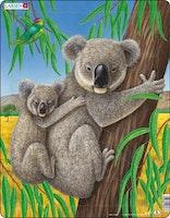 Koala 25 bitar