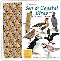 Fåglar vid hav och kust