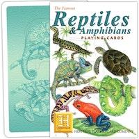 Reptiler & Amfibier