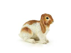 Kanin (Papo)