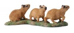 Kapybara ungar (Collecta)
